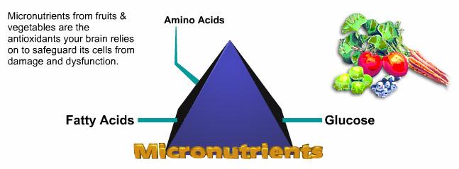macronutrients | micronutrients | macro nutrients | micro, Cephalic Vein